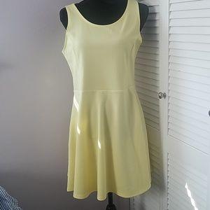 NWOT H&M skater mini dress